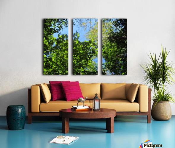 Landscape (181) Split Canvas print