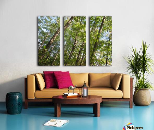 Landscape (108) Split Canvas print