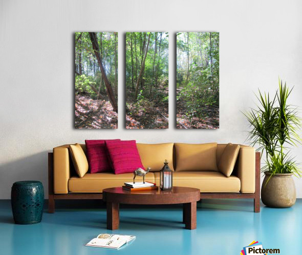 Landscape (184) Split Canvas print