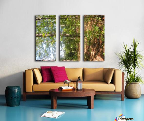 Landscape (105) Split Canvas print