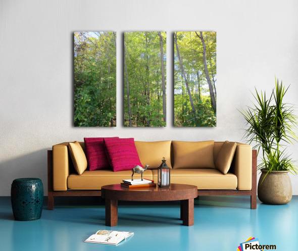 Landscape (288) Split Canvas print