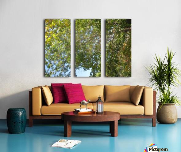Landscape (302) Split Canvas print