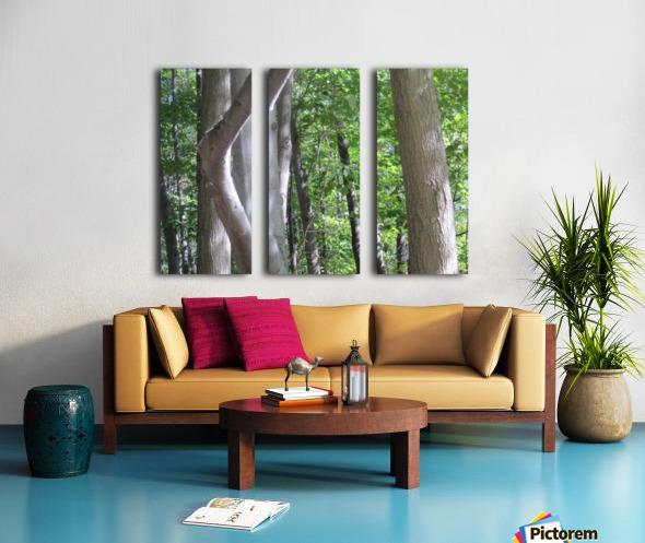 Landscape (266) Split Canvas print