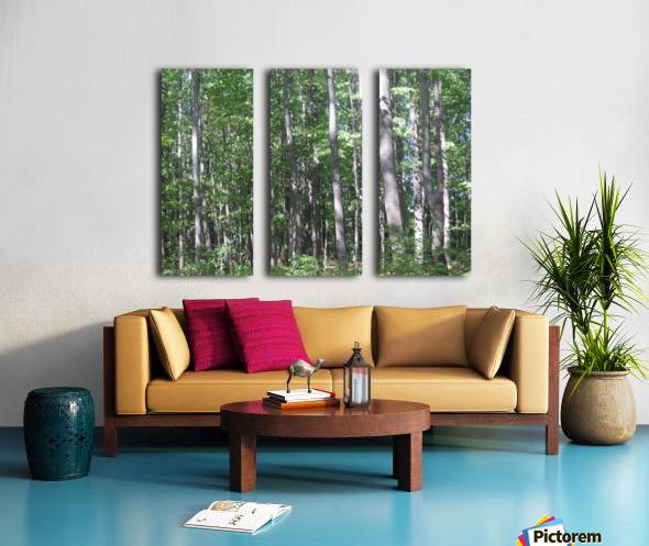 Landscape (87) Split Canvas print
