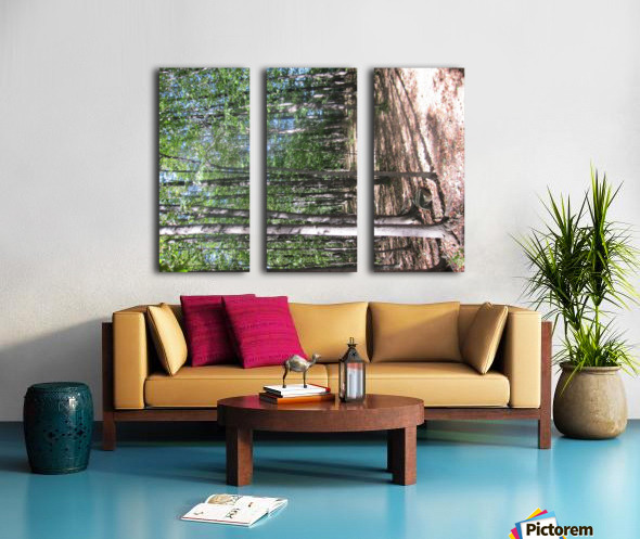 Landscape (127) Split Canvas print