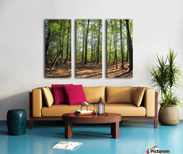 Landscape (37) Split Canvas print