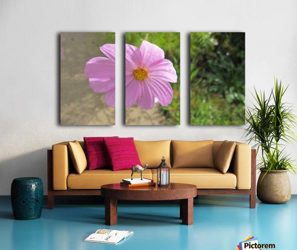 Flowers (83) Split Canvas print