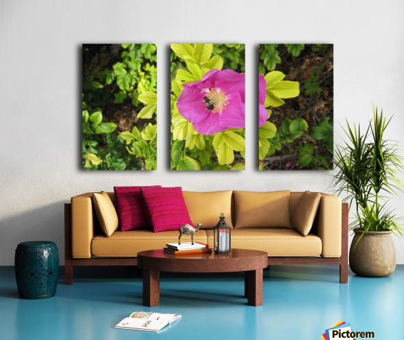 Flowers (24) Split Canvas print