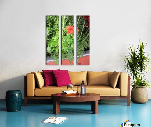 Flowers (55) Split Canvas print