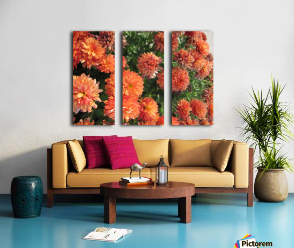 Flowers (53) Split Canvas print