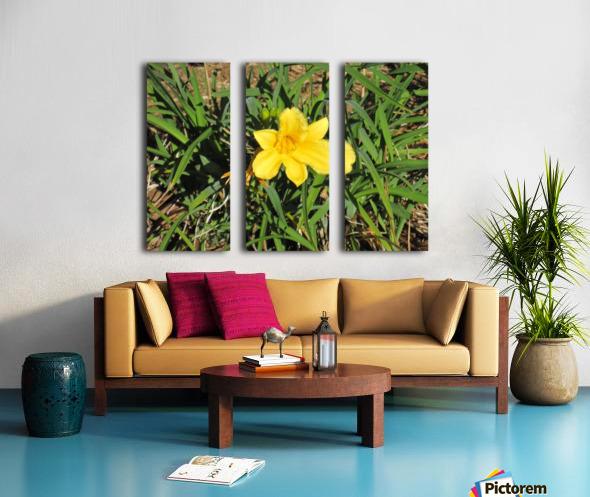 Flowers (35) Split Canvas print