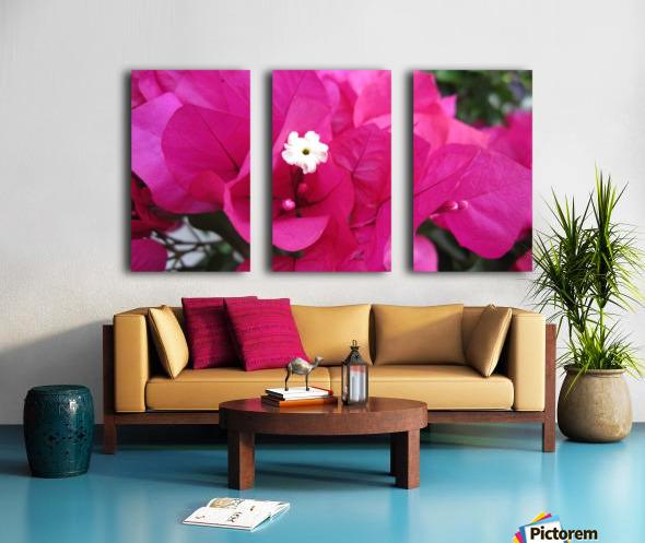 Flowers (95) Split Canvas print