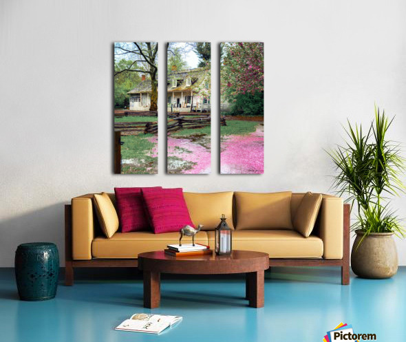 Prospect park Brooklyn Split Canvas print