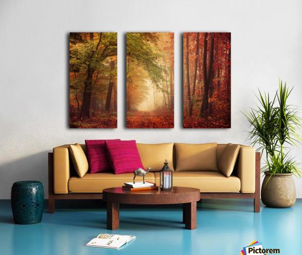 Colorful autumn forest Split Canvas print