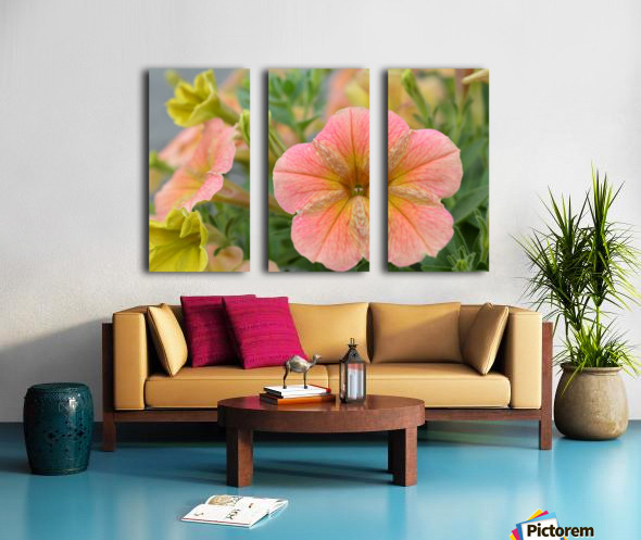 Orange Flowers Photograph Split Canvas print