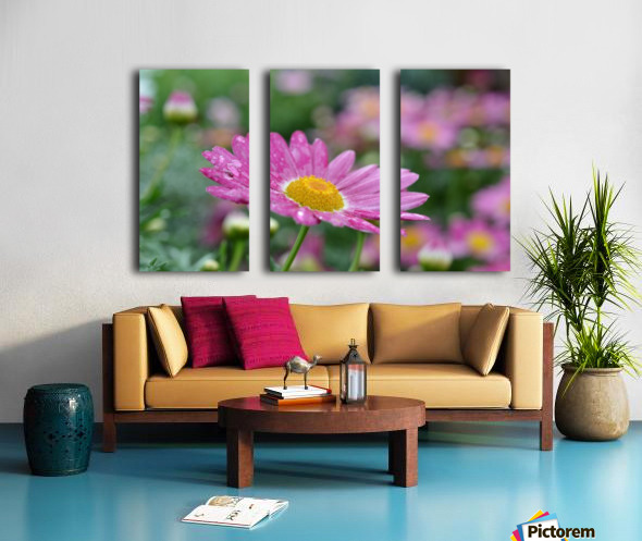 Pink Flower Photograph Split Canvas print