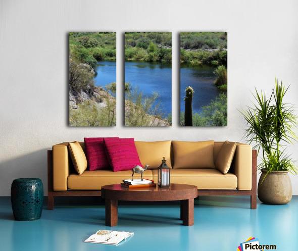 Salt River Split Canvas print