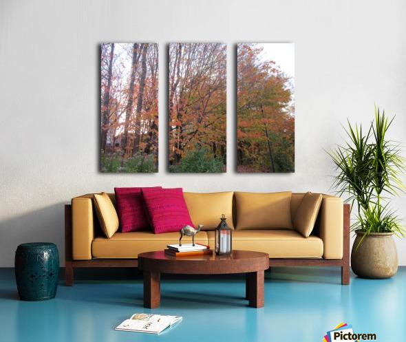 Fall Season (11) Split Canvas print