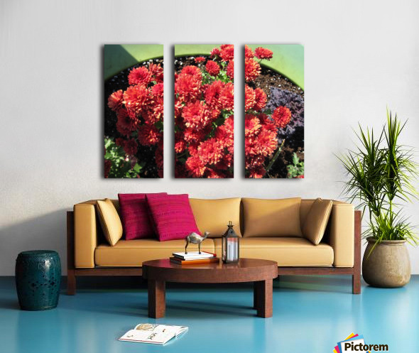 Flower (4) Split Canvas print