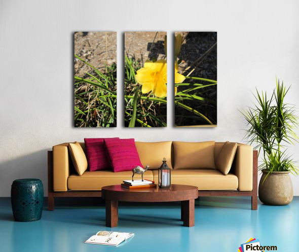 Flower (49) Split Canvas print