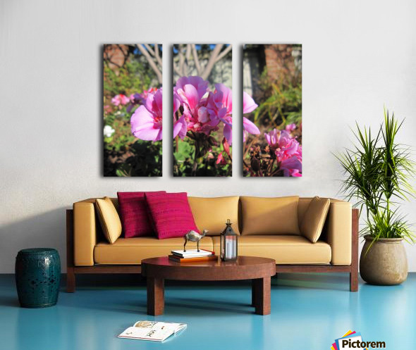 Flower (111) Split Canvas print