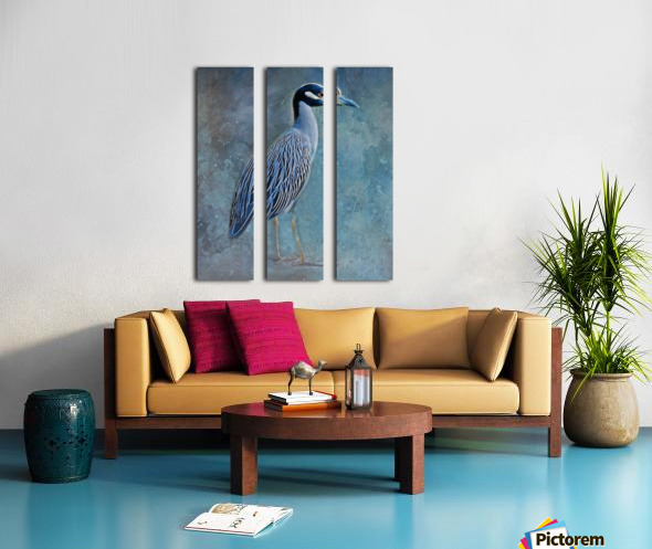 Night Heron Blues Split Canvas print