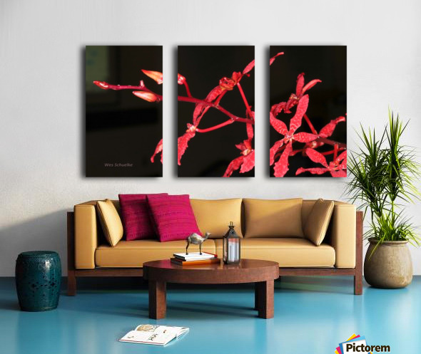 IMG_0124_a_WS Split Canvas print