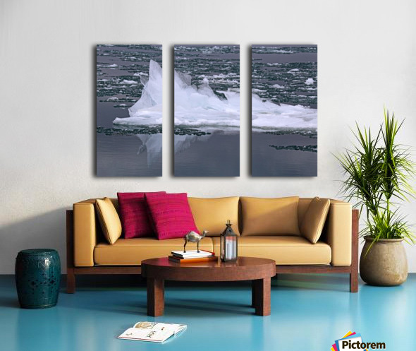 Jagged Ice on the River 2 021619 Split Canvas print