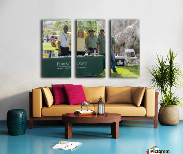 IMG_1528 Split Canvas print