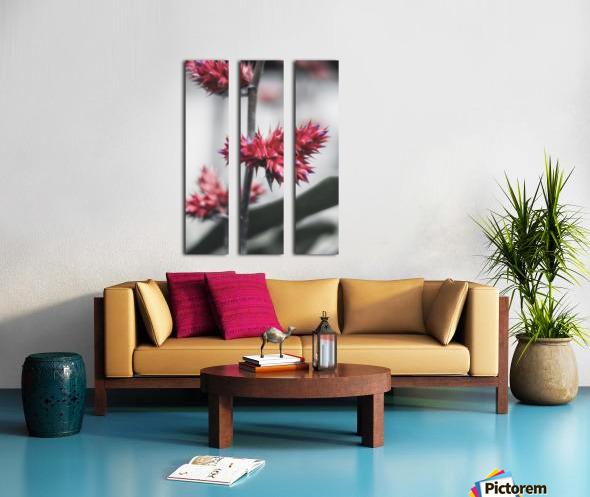 spiked flower Split Canvas print