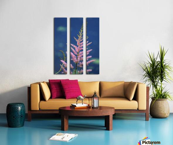 Pink Floral Dow Gardens 2 062718 Split Canvas print