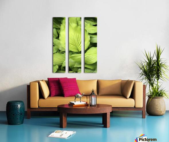 Softly Curving Foliage 062618 Split Canvas print