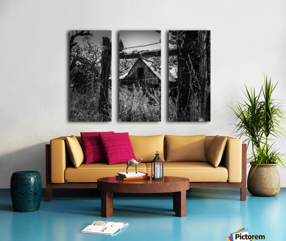 Abandoned Black and White Split Canvas print