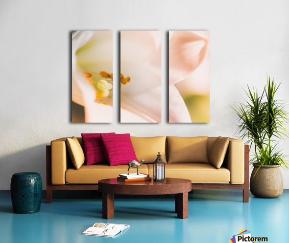 Easter Lily - Lilium Longiflorum - Flower Lily - Yellow White Close-Up Macro Split Canvas print