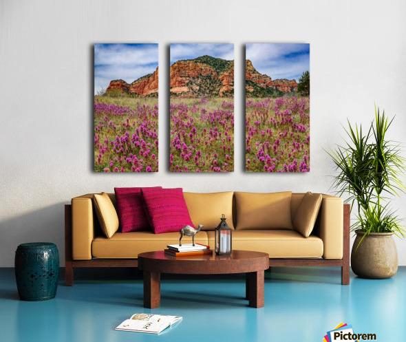 Clover Fields in Sedona Split Canvas print
