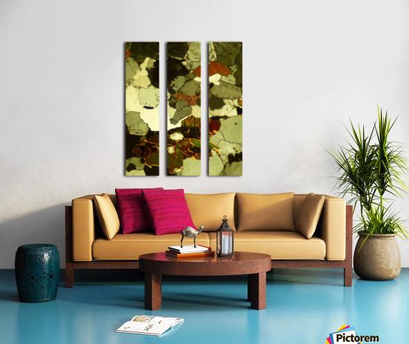 Forest Primeval Split Canvas print