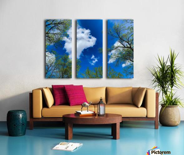 Bliss a Sky  Toile Multi-Panneaux