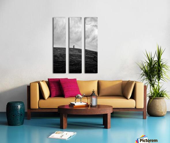 Surveyor... Split Canvas print