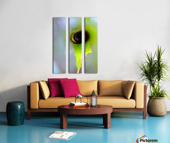 Curled Leaf 03 Split Canvas print
