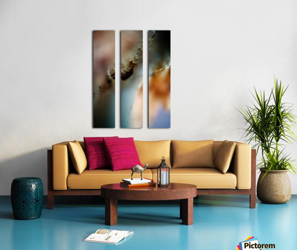 Abstract Macro Nature Photography 50 Split Canvas print