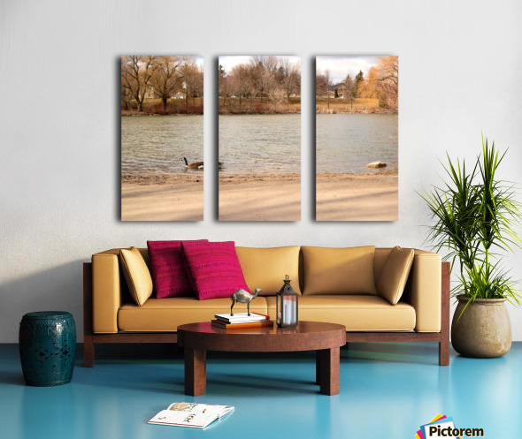 Canada Goose Split Canvas print