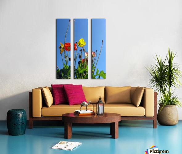 Spring Sky Garden Split Canvas print