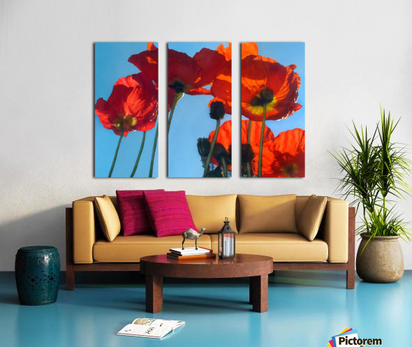 Poppies in the Sky Split Canvas print