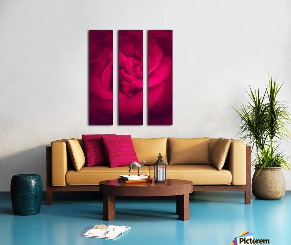 red rose background Split Canvas print