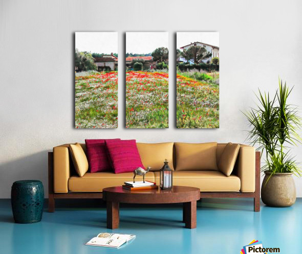 Old Farm House With Poppies Split Canvas print