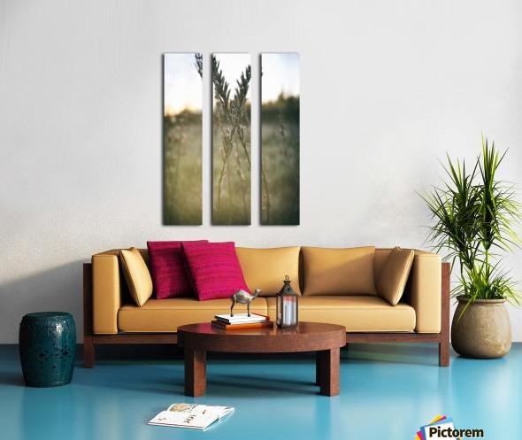 intertwined Split Canvas print