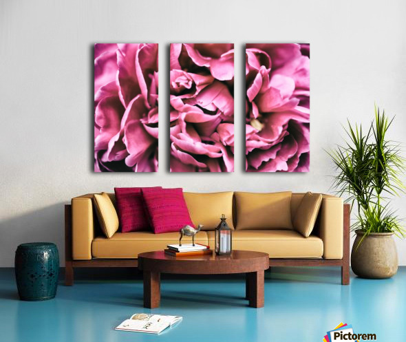 Up Close Split Canvas print