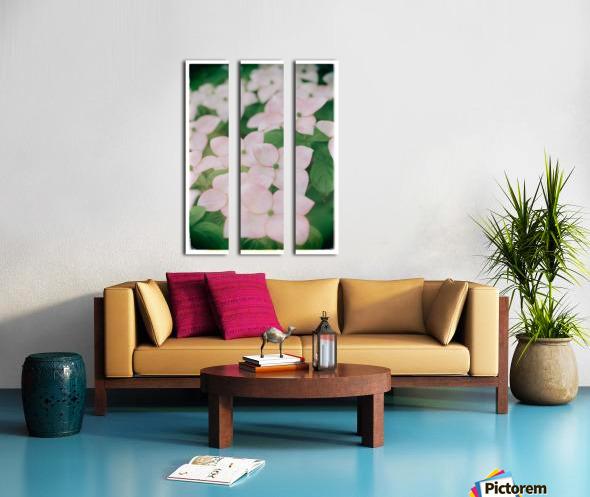 Sea of Pink Split Canvas print