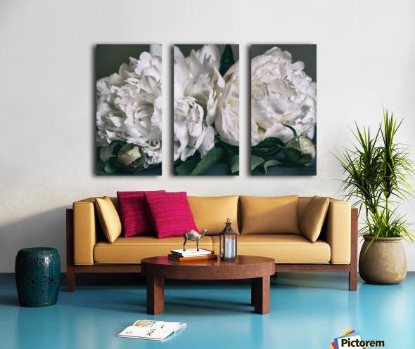 Two Peonies Split Canvas print