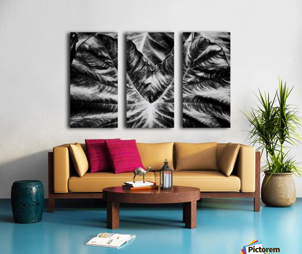 Boldness of Nature Split Canvas print